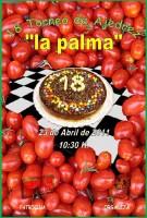 Cartel Torneo XVIII La Palma
