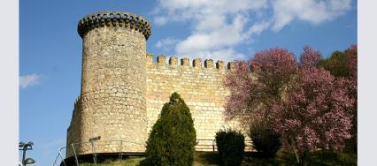 Villa-de-Almazan-2011