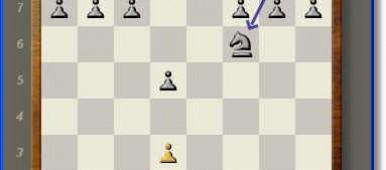 Mayura Chess Board